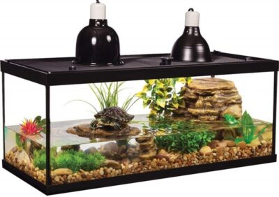 Tetra Deluxe Aquatic Turtle Kit