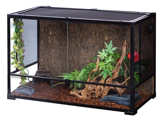 Blood Python Enclosure